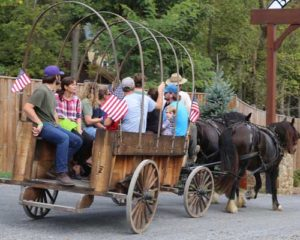 wagon rides with horses
