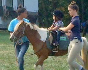 horse rides at the fair