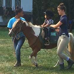 Pony Rides ($)